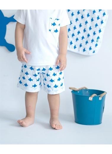 Nila Kids Shark Organik Erkek Bebek şort Beyaz